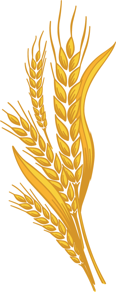 wheat of left side